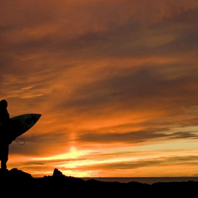 """Sunset Surfer 1"" stock image"