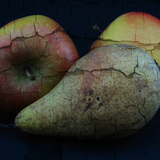 """Cracked Apples & Pears"" stock image"