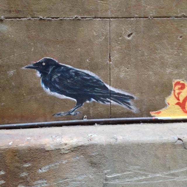 """Wallpaper Graffiti 05, Perth"" stock image"