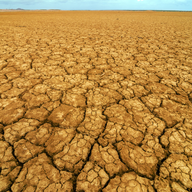 """""""Dry Cracked Earth"""" stock image"""