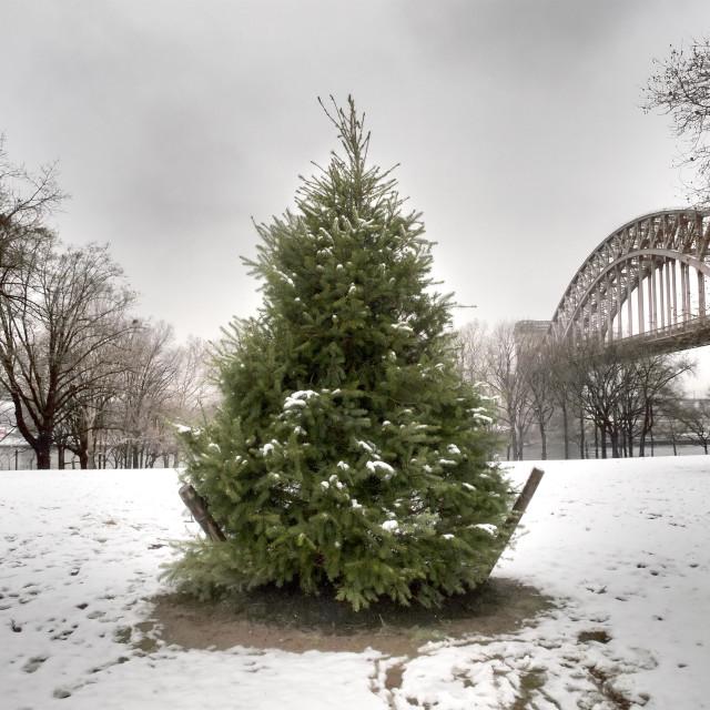 """Astoria Park, NYC"" stock image"