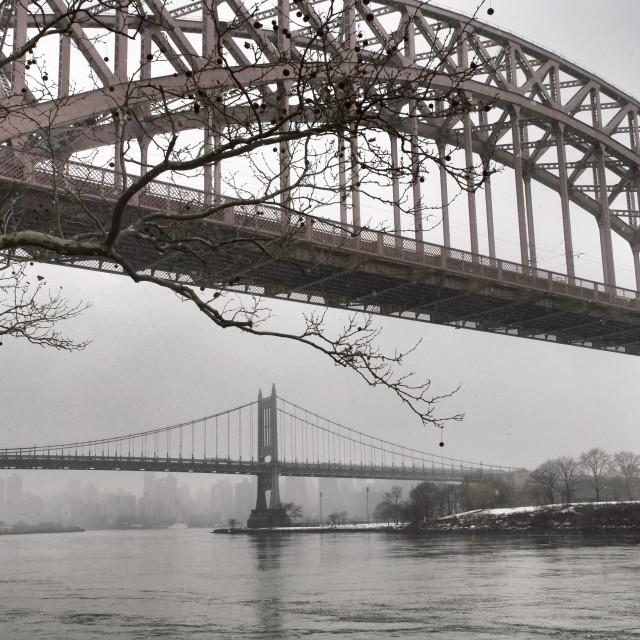 """""""Astoria Bridges"""" stock image"""