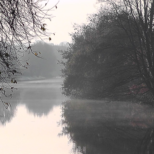 """""""Mist over the river"""" stock image"""