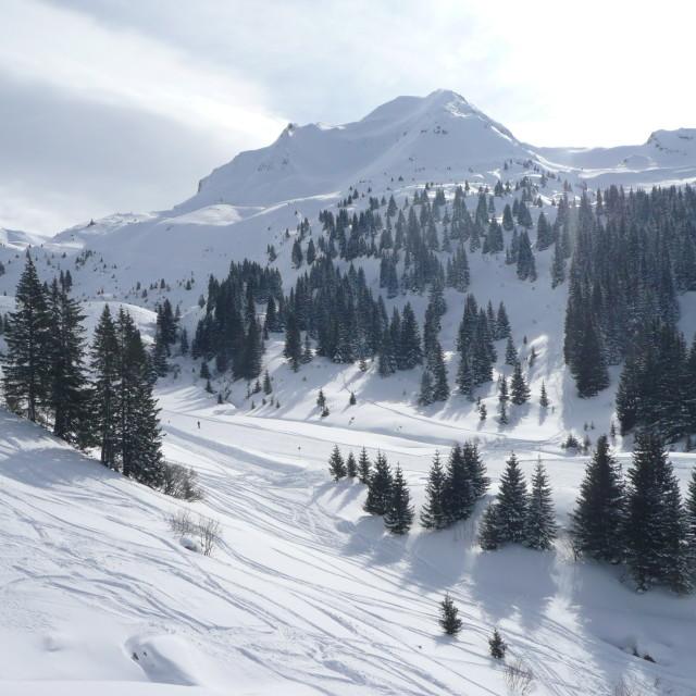 """Snowy mountain"" stock image"