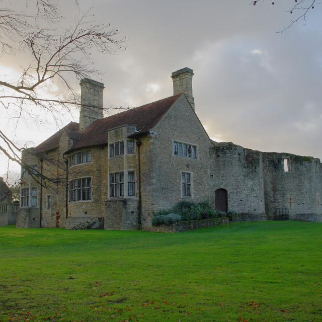 """""""Leybourne Castle"""" stock image"""