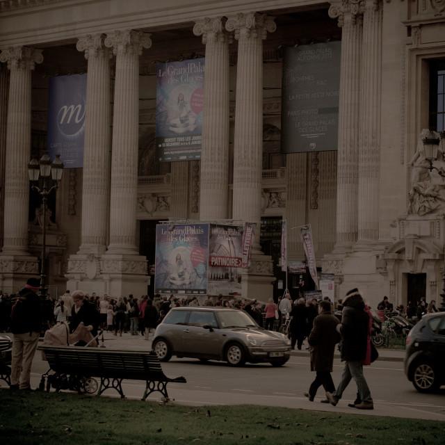 """Le Grand Palais"" stock image"