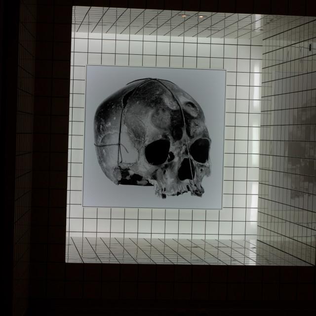 """""""Skull art"""" stock image"""