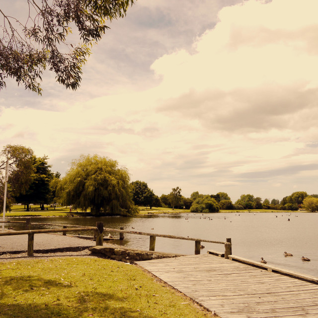 """Henley Lake, Masterton, New Zealand"" stock image"