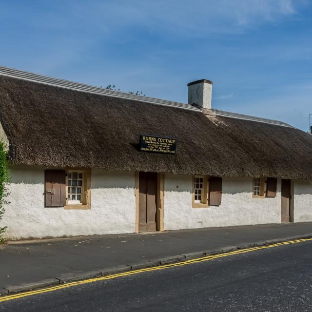 """""""Burns' cottage"""" stock image"""
