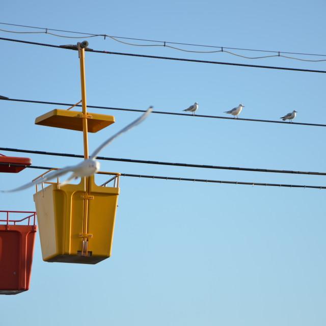"""""""Funicular & Seagulls"""" stock image"""