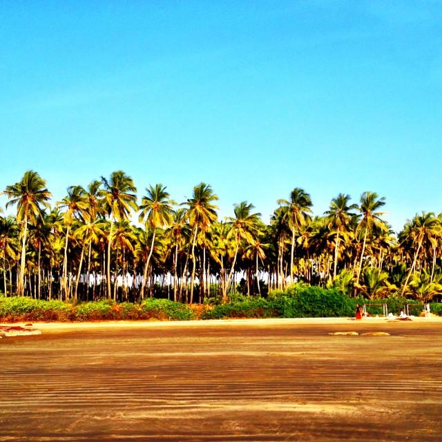 """The beach in Goa"" stock image"
