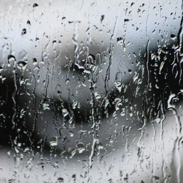 """Rain on the Window"" stock image"
