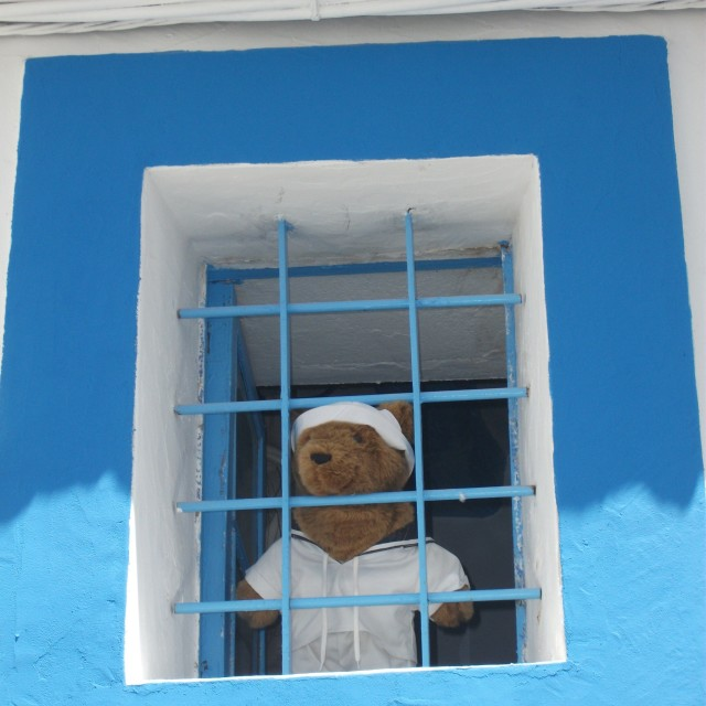 """Lifer Teddy Bear"" stock image"