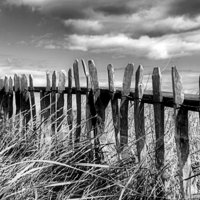 """Beach Fence"" stock image"