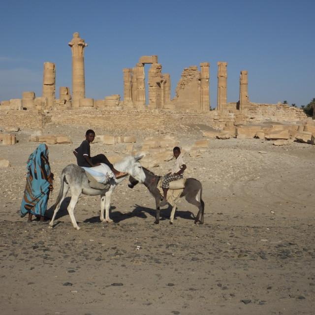 """donkey boys of the desert"" stock image"