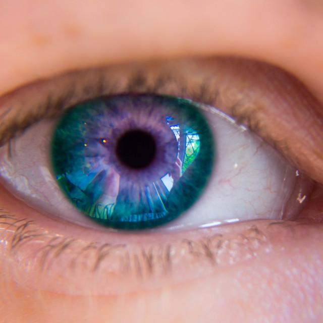 """""""Eye"""" stock image"""