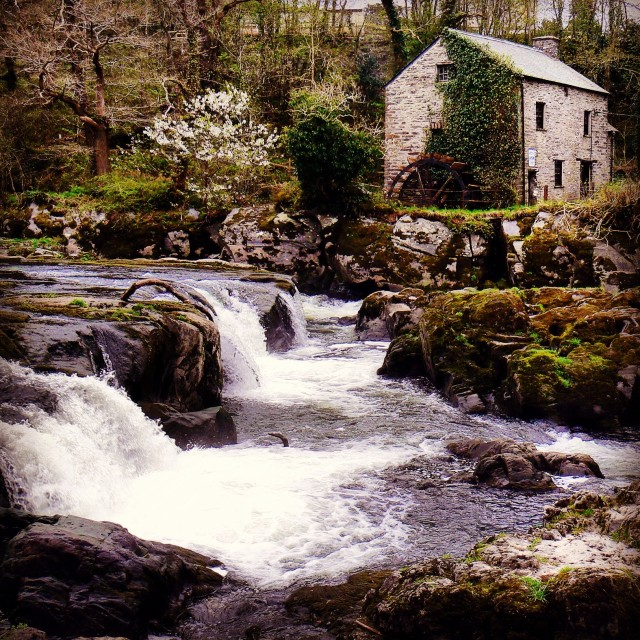 """""""The water mill"""" stock image"""