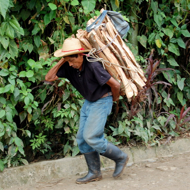"""Man carrying wood"" stock image"