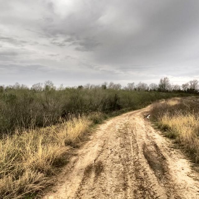 """Muddy Road"" stock image"