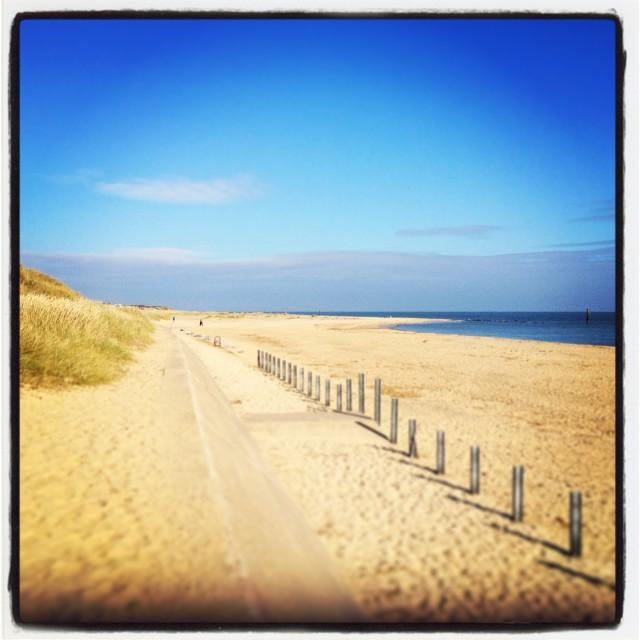 """sunny sandy beach"" stock image"