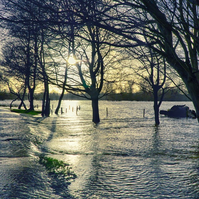 """Floodwaters in Christchurch meadow, Oxford"" stock image"