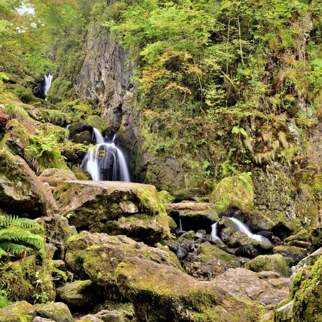 """Lodore Falls,Borrowdale- Lake District/UK"" stock image"