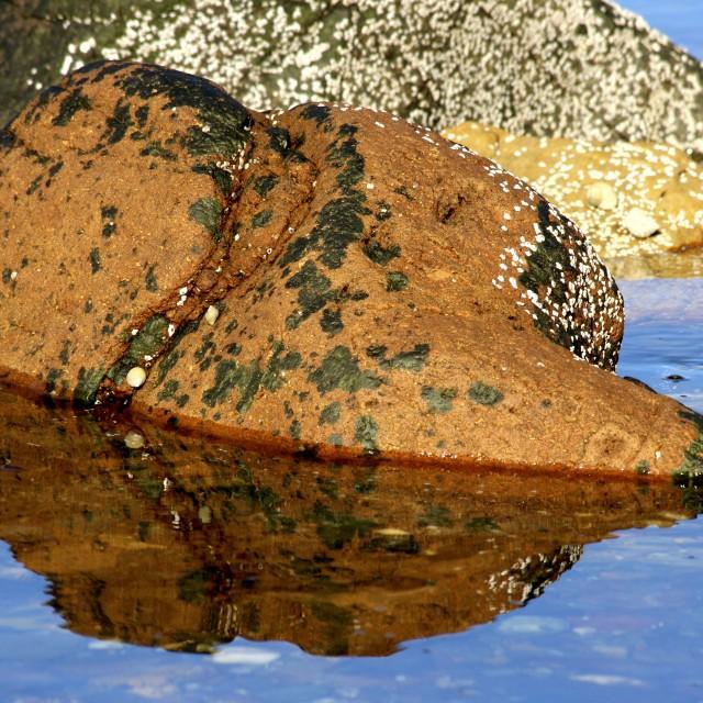 """Rock Reflections 2"" stock image"