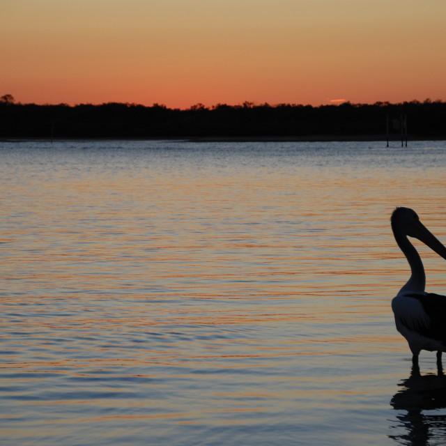"""Noosa sunset"" stock image"