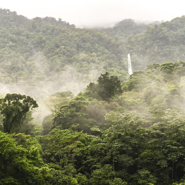 """Waterfall in the rainforest, Pico Bonito National Park, Honduras"" stock image"