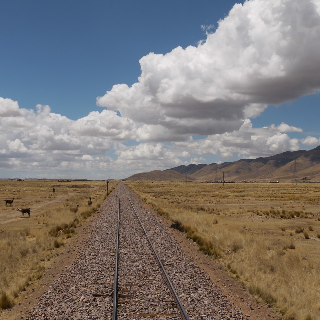 """Train journey across the Altiplano"" stock image"