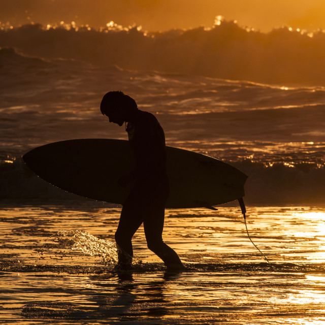 """Sunset Surfer"" stock image"