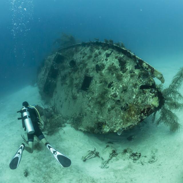 """""""Scuba diver inspecting a shipwreck off Utila, Honduras"""" stock image"""