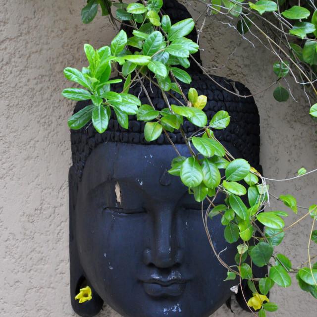"""Buddha Head"" stock image"