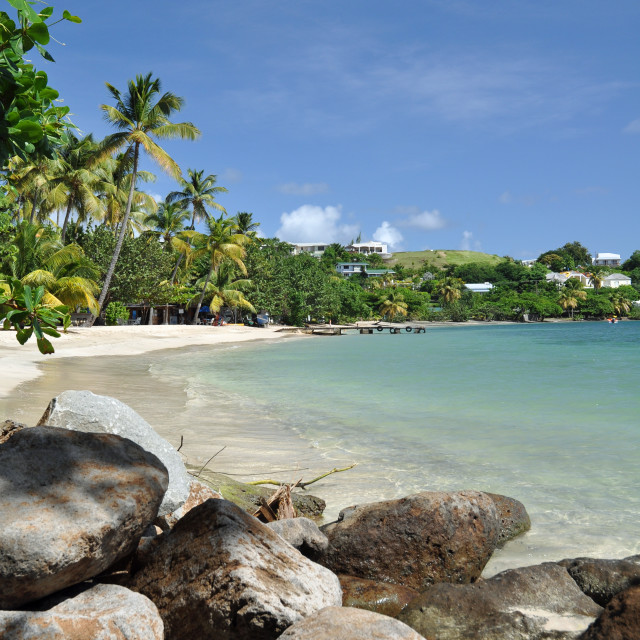 """Calabash Beach, Grenada, Carribean"" stock image"