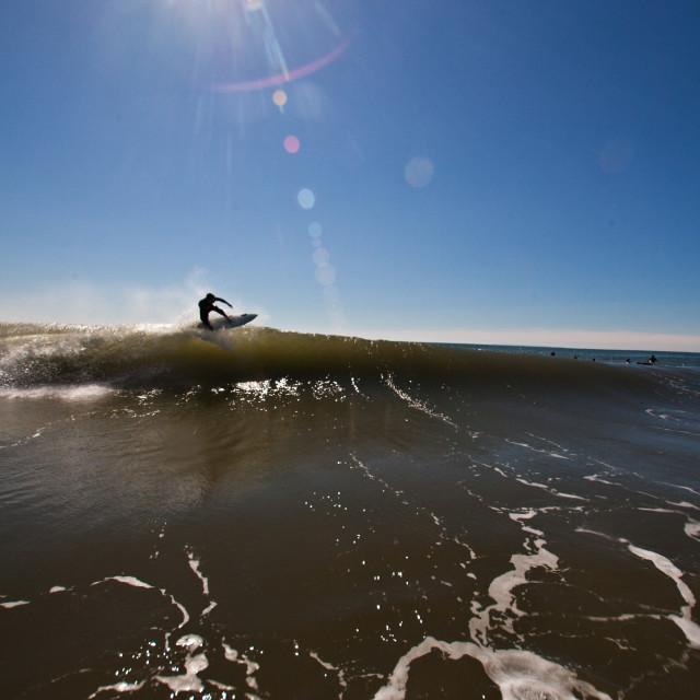 """Sunshine Surfing"" stock image"