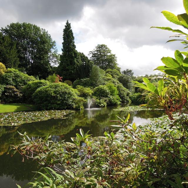 """""""Biddulph Grange Garden"""" stock image"""
