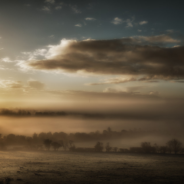 """Misty Dawn"" stock image"