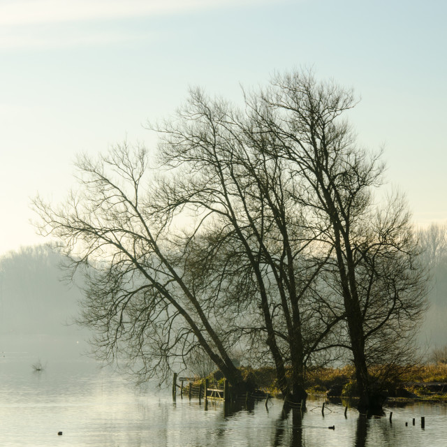"""Morning Mist on the Water"" stock image"
