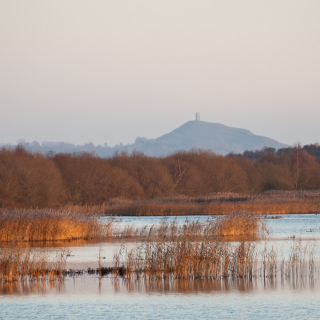"""Glastonbury Tor and Somerset Levels"" stock image"