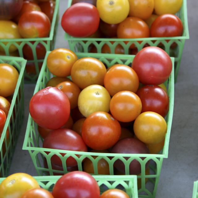 """""""Tomato Tomahto"""" stock image"""