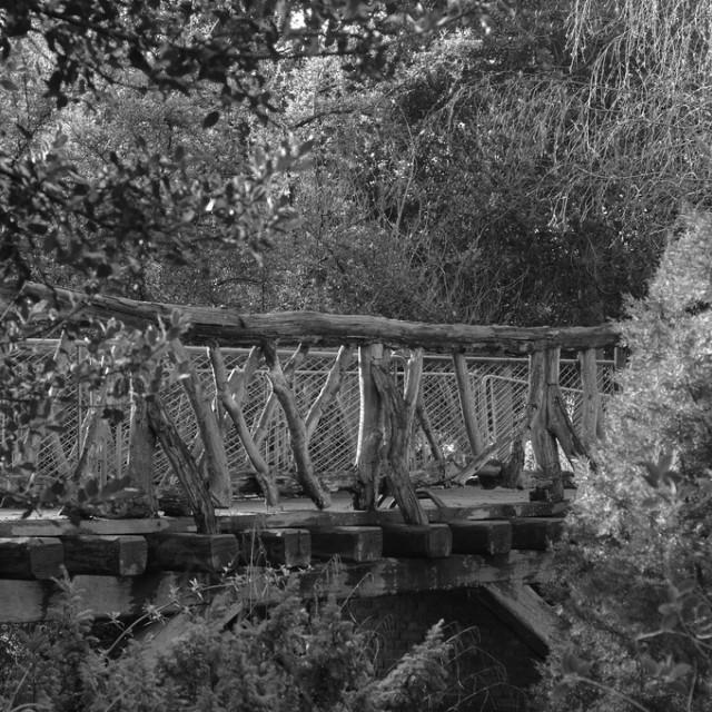 """The old wooden bridge"" stock image"