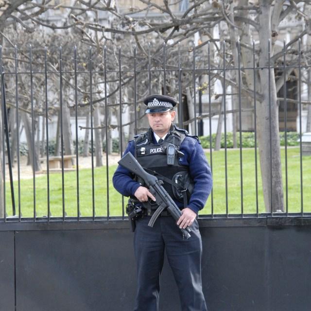 """Armed Metropolitan Police Officer"" stock image"