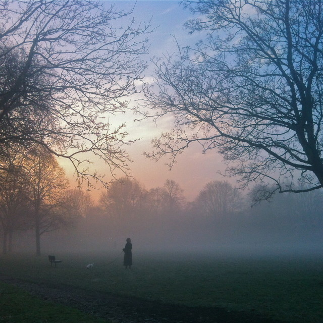 """""""Frosty morning over the park"""" stock image"""