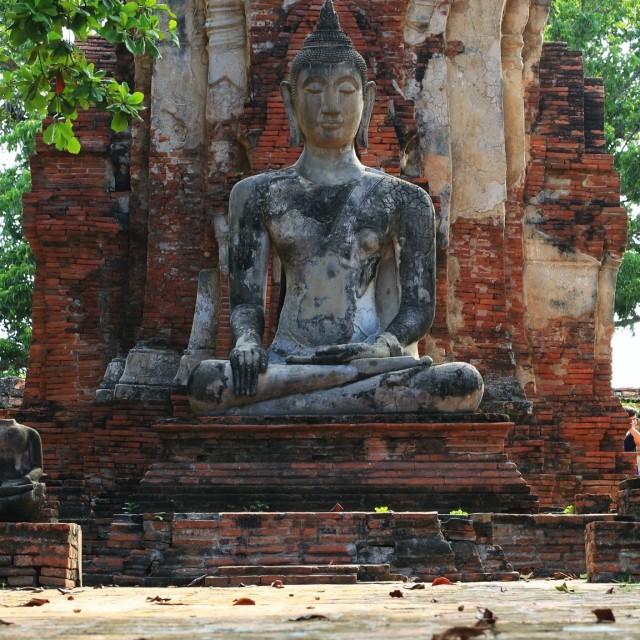 """""""Image Buddha"""" stock image"""