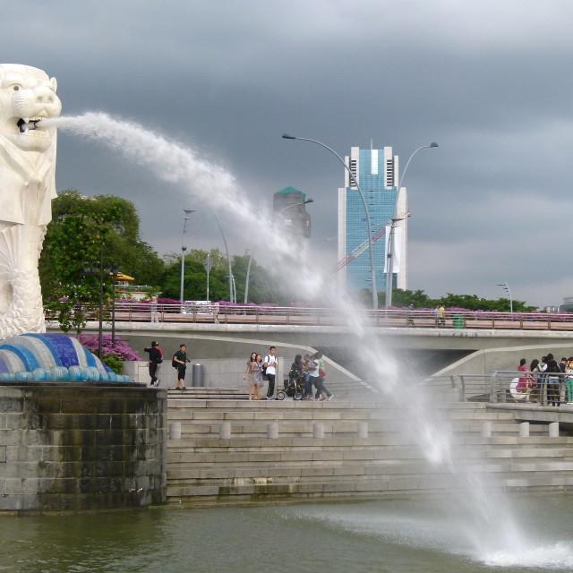 """The Singapore Lion fountain"" stock image"