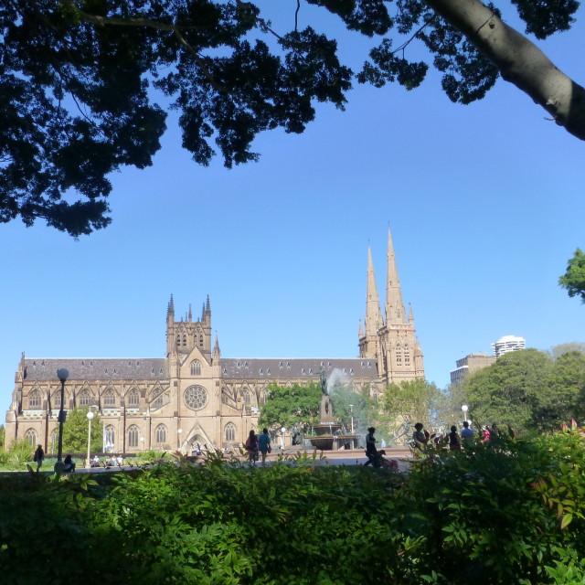 """Sydney Cathedral, Australia"" stock image"