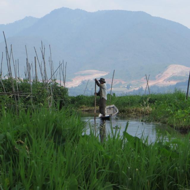 """Inle Lake, Burma, Floating Gardens worker"" stock image"