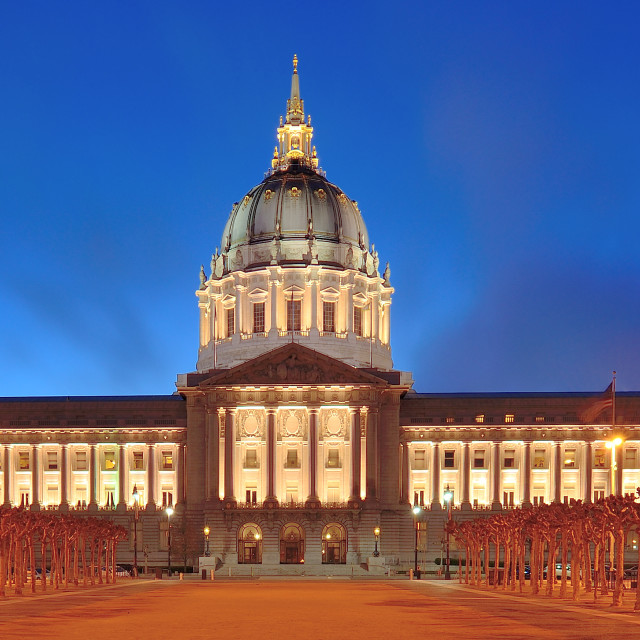 """San Francisco City Hall"" stock image"