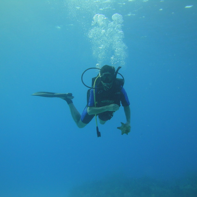 """""""Diver"""" stock image"""