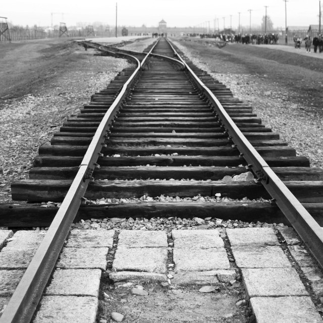 """""""The path to death - Auschwitz"""" stock image"""